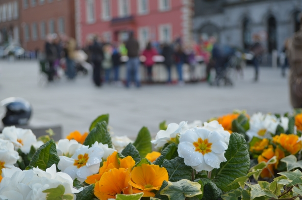St Patrick's weekend in Kilkenny, welcome to Ireland!    Copyright Keep Kilkenny Beautiful