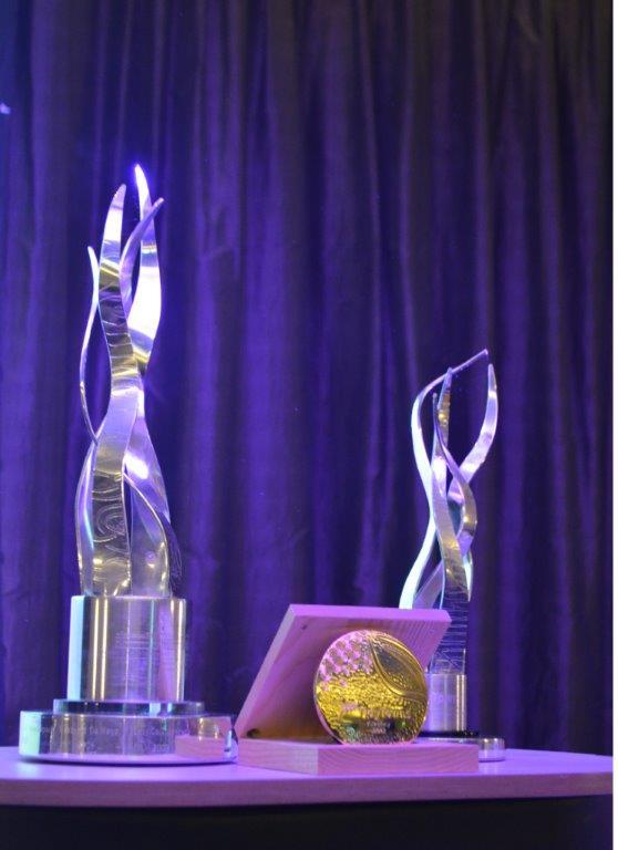 awards night 7