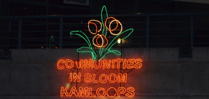 communities in bloom 1
