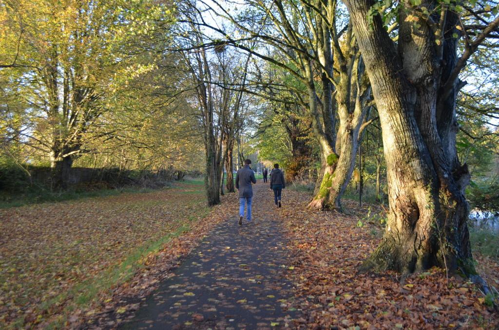 Canal Walk, Kilkenny