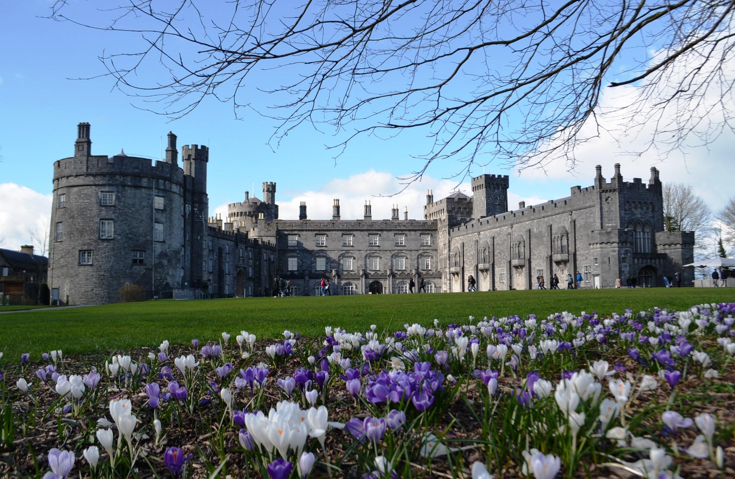 Image result for castle kilkenny