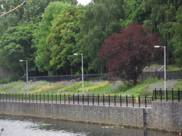 View of Peace park from the Nore Pedestrian bridge