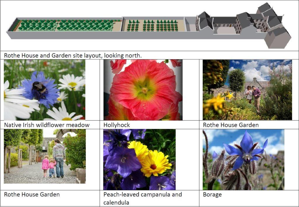 Rothe House Bee Garden