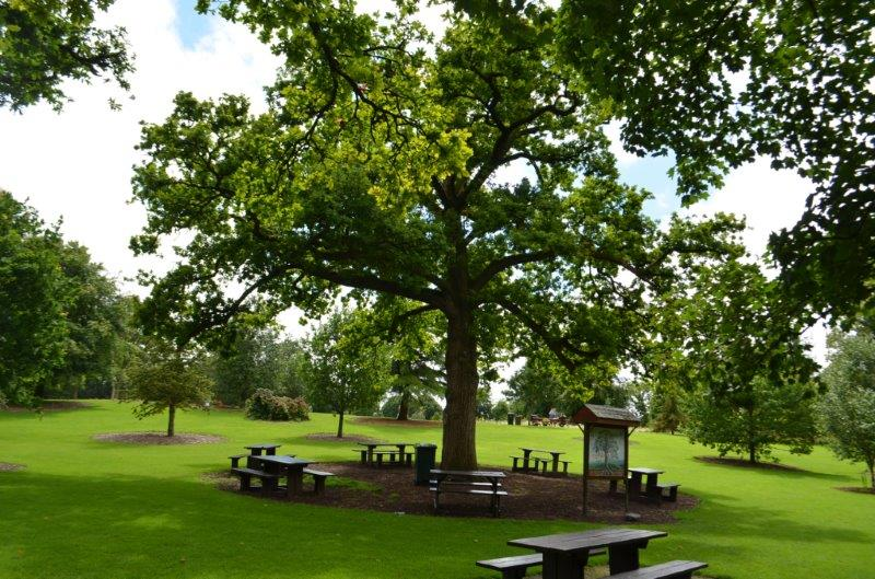 picnic area in castle park