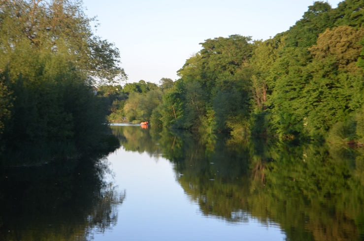 Extensive tree cover through Kilkenny City along River Nore